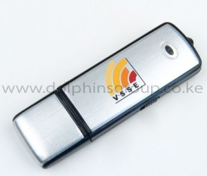 branded flash drives dolphins group