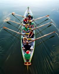 dolphins_training_and_consultants_ltd_team_building